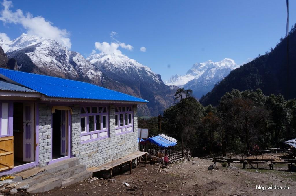 Manaslu (8156m) von aus Timang aus