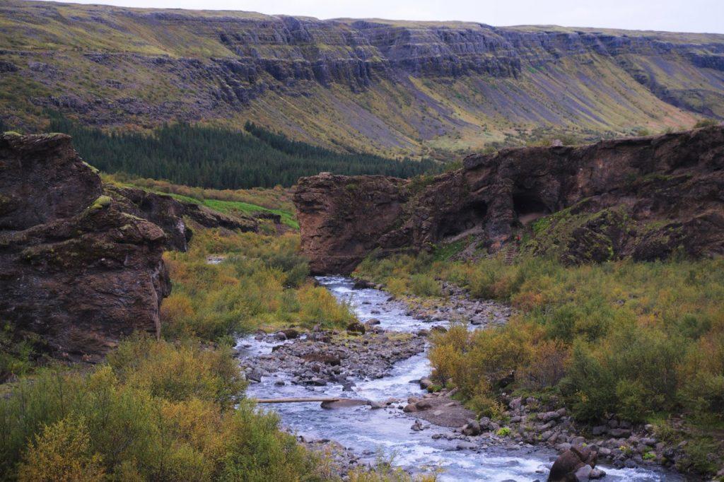 Höhle und Baumstamm im Aufstieg zum Glymur
