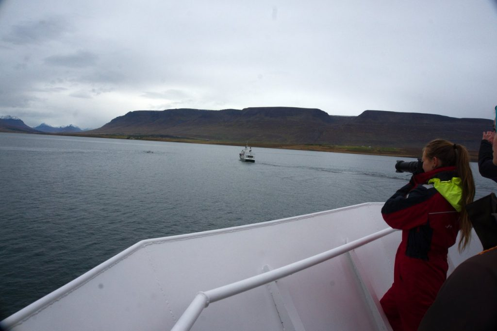 Meeresbiologin von Elding